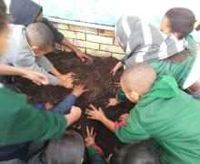 digging for Mandela 2013