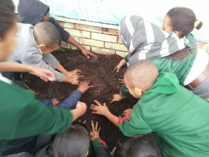 digging for Mandela 2013